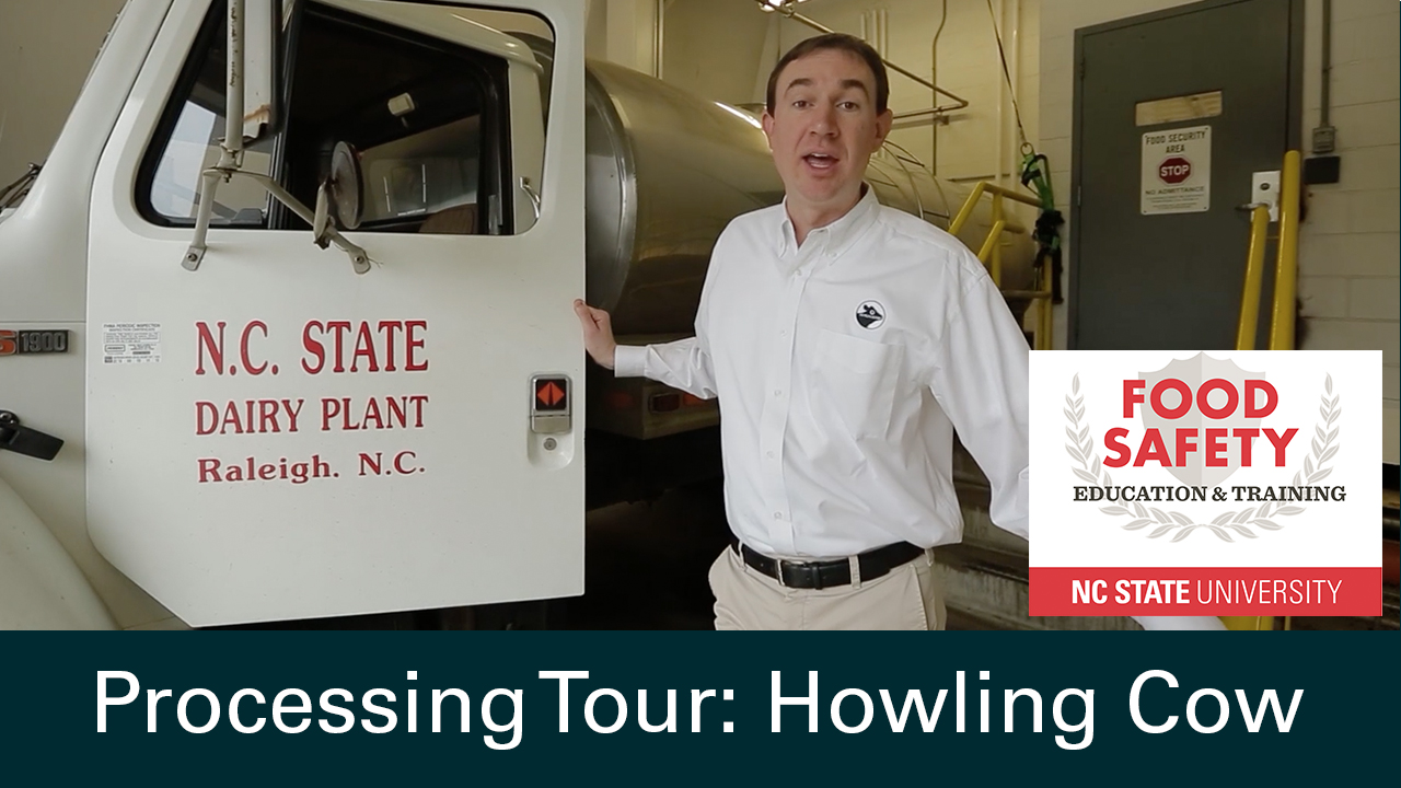 Processing Tour of Howling Cow